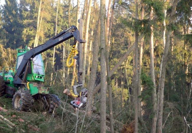 Harvester im Einsatz am Schräghang